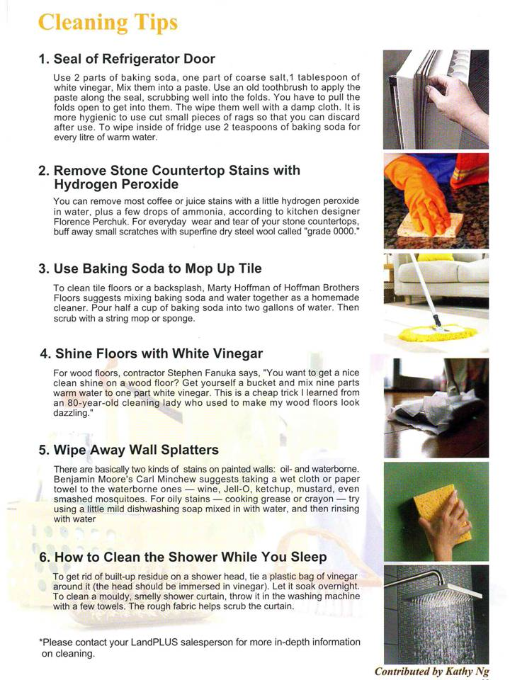 Cleaning tips home carely cleaning services - Home secrets brief cleaning guide ...